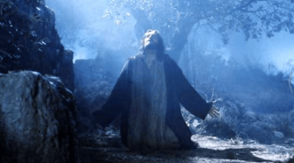 Testigos de la obediencia