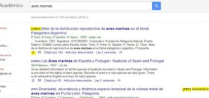 Consejos para aprovechar al máximo Google Académico
