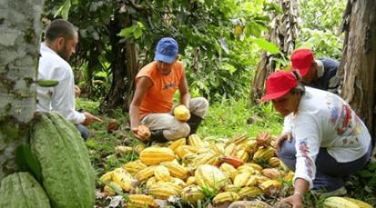 100 agricultoresdel departamento viajaronpara participar de la rueda de negocios y muestra comercial