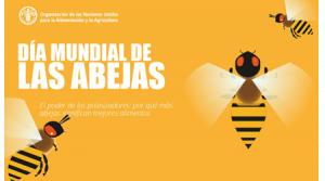 20 de mayo: Día Mundial de las Abejas, las principales responsables de la supervivencia de los ecosistemas